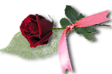 Rose1aombre